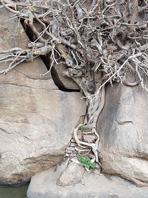 Psychotherapie Prien am Chiemsee